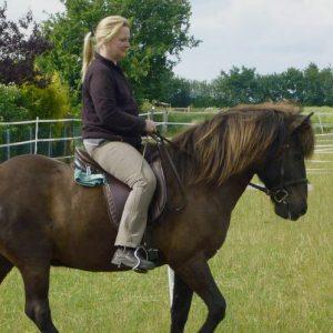 Simone reitet Isländer Baukur im Reitunterricht.
